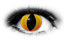 ADRIA Crazy Color Yellow Cat Eyes